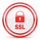 ssl red white glossy web icon