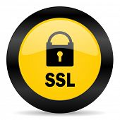 ssl black yellow web icon