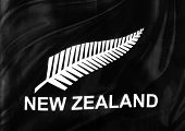 Closeup of silky New Zealand silver fern flag