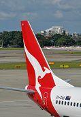 Qantas Plane Tail At Sydney International Airport