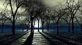 stock photo of spooky  - Spooky 3d image of bare trees forest at night with full moon - JPG