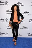 LOS ANGELES - MAY 19:  Sherri Saum at the Disney Media Networks International Upfronts at Walt Disney Studios on May 19, 2013 in Burbank, CA