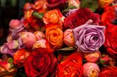 Bunches Of Colorful Roses