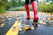 Autumn fall concept with colorful leaves and rain boots outside. Close up of woman feet walking in r