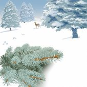 Winter landscape with spruce branches, trees and deer.