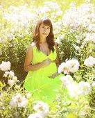 Pregnant Lovely Woman In Flowers In Summer Sunny Day