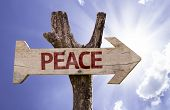 Peace wooden sign on a beautiful day