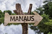 Manaus wooden sign on a forest background
