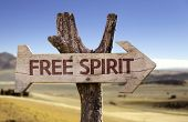 Free Spirit wooden sign with a desert background