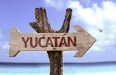 picture of yucatan  - Yucatan wooden sign with a beach on background - JPG