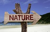 Nature wooden sign with a beach on background