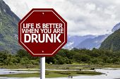 Life Is Better When You Are Drunk red sign with a landscape background