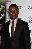 LOS ANGELES - NOV 6:  David Oyelowo at the AFI FEST 2014 Screening Of