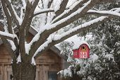Snow covered red barn birdhouse hanging on tree outside near shed in backyard
