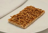 foto of worm  - Breakfast with meal worm and honey on toast - JPG