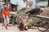 Pilgrim in Orissa.