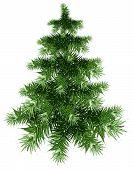 Fluffy green Christmas tree