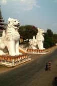 White Twin  Lions Is Guardians At Myanmar Temple.