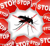 picture of gnats  - illustration of stop mosquitoes abstract concept background - JPG