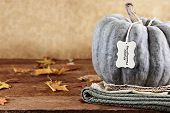 Green Pumpkin With Tag And Text