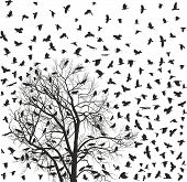 Flock Of Crows Over White Tree
