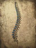 grunge style spine