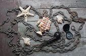image of shells  - Old rusty metal chain - JPG