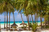 pic of beachfront  - tropical beach with palm trees and beach beds - JPG