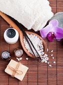 picture of sea life  - Spa still life with aroma oils sea salt and vanilla pods - JPG