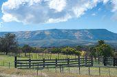 Grand Mesa Ranch