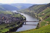 stock photo of moselle  - Moselle river flows through three countries - JPG
