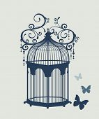 beautiful vintage birdcage and butterfly
