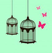 sweet vector birdcage design