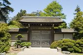 The Japanese Tea Garden Back Door From The Front