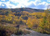 Autumn On The Grand Mesa 5