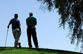 Los golfistas soporte en la parte superior de elevada verde