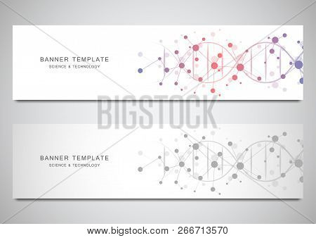 Vector Banners And Headers For