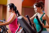Young women in gym on stepper machine
