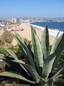 View of the beach in Vina del Mar, Chile