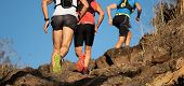 Group Of Runners In A Cross Country Race, Trail Running poster