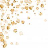 Gold Seashells Vector, Golden Pearl Bivalved Mollusks. Sea Scallop, Bivalve Pearl Shell, Marine Moll poster