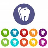Canine Tooth Icon. Simple Illustration Of Canine Tooth Icon For Web poster
