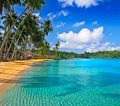 stock photo of beach-house  - Paradise nature - JPG
