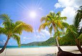 Sunny tropical beach in the Islands