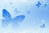 Back Butterflly