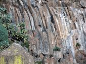 Rocky side of columnar basalt