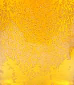 image of transpiration  - Beer background - JPG