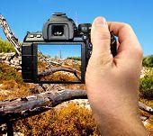 Réflex digital fotografía de paisaje