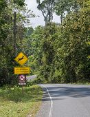 Asphalt Road With Wildlife Crossing Sign. Nature And Wildlife Views In The Middle Of The Jungle In T poster