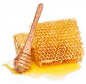 Honeycombs and wooden stick in the honey puddle isolated on white background. poster